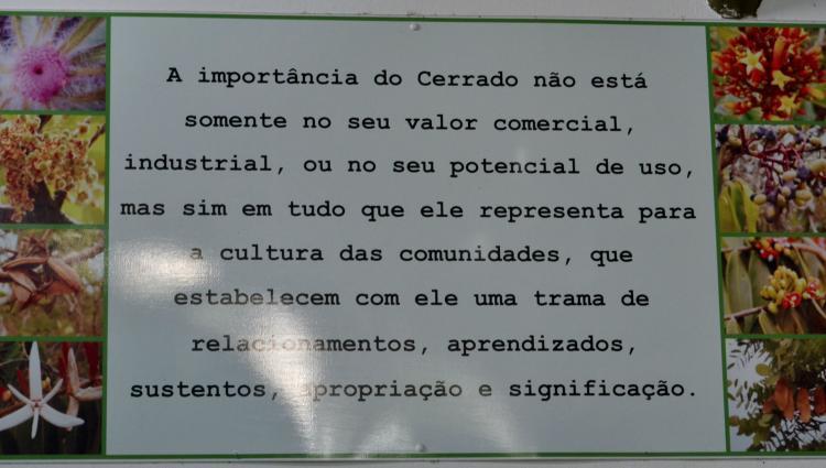 Foto: Letícia França - Museu de Biodiversidade do Cerrado